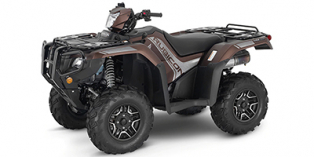 2021 Honda FourTrax Foreman® Rubicon 4x4 Automatic DCT EPS Deluxe