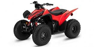2021 Honda TRX® 90X